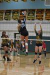 Deer Valley Varsity Girls Volleyball defeats Peoria 3 – 0