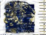 2021 Klein Collins Football Schedule