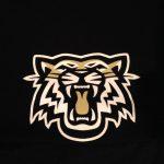 Central Magnet High School Girls Varsity Basketball beat Gordonsville 51-30
