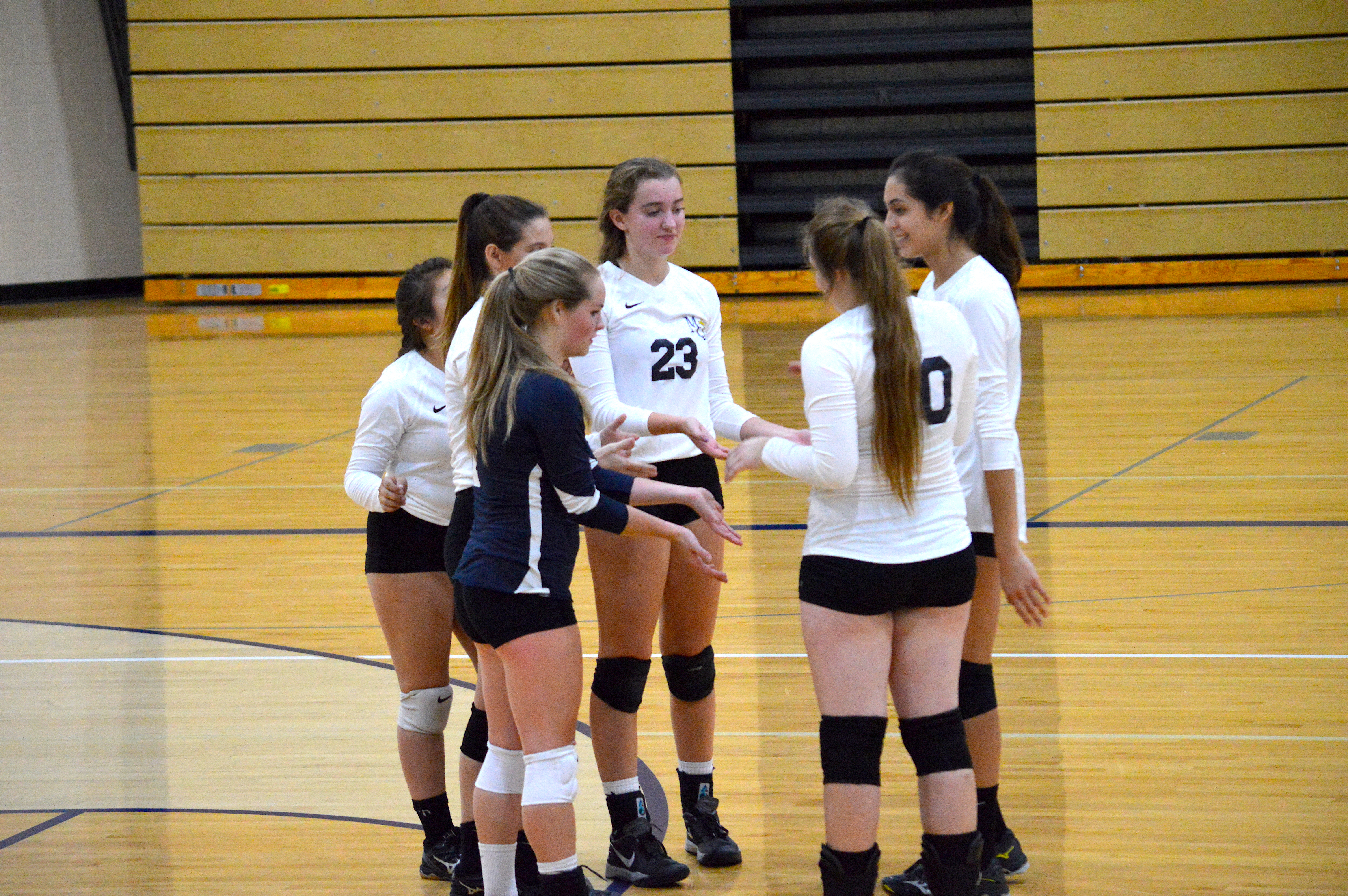 Volleyball Season Concludes at Morgan Township
