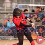 Liberty High School Varsity Softball beat York Comprehensive High School 10-8