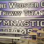 Girls Varsity Shines in Individual North East Gymnastics Conference Meet