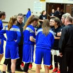 Taylor HS Girls Varsity Basketball Sectional vs Tipton 2/2/19