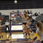 Volleyball edges out LSN