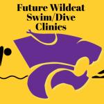 FUTURE WILDCAT SWIM/DIVE SUMMER CLINIC SERIES SIGNUP