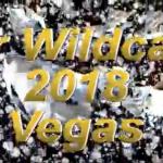 MR. WILDCAT 2018 (VIDEO)
