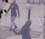 VOLLEYBALL FALLS SHORT AGAINST LIBERTY