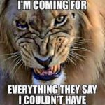 Mighty Lions Football – Everything They Said We Could Not Have