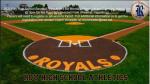 2020-2021 RHS Baseball Tryouts