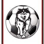 Boys Soccer Newsletter