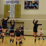 Wildcat Volleyball Advances to Regional Finals