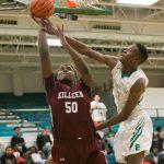 Basketball: Ellison tops Roos
