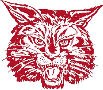 Bat Cats to play in 61st District Championship