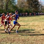 Cross Country Teams Have Strong Showing at State Meet