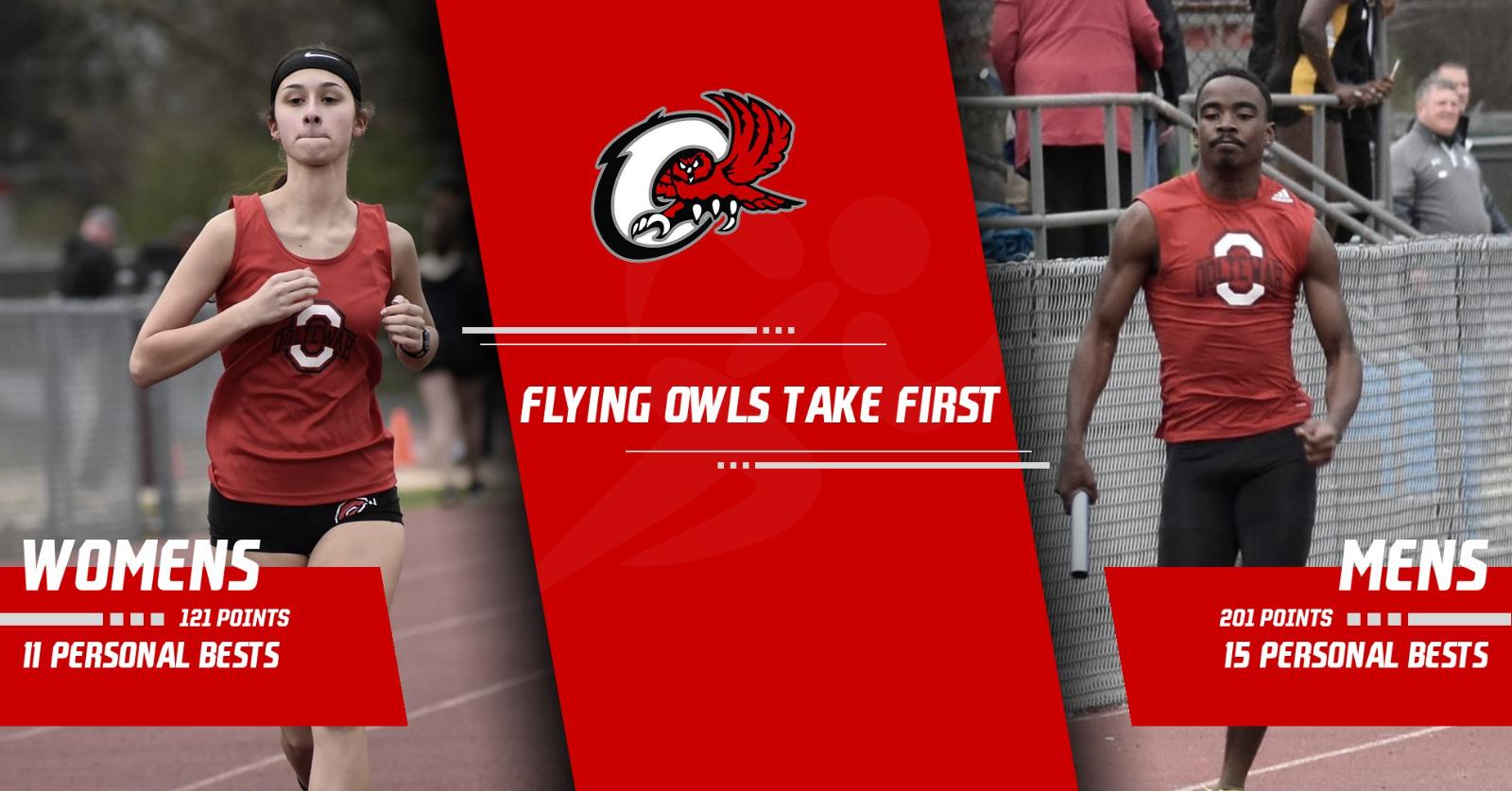 Flying Owls Do It Again