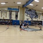 Volleyball Pictures