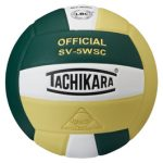 Hawks Take on DMC in Middle School Volleyball