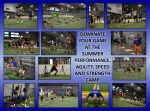 PERFORMANCE AGILITY SPEED AND STRENGTH SUMMER CAMP