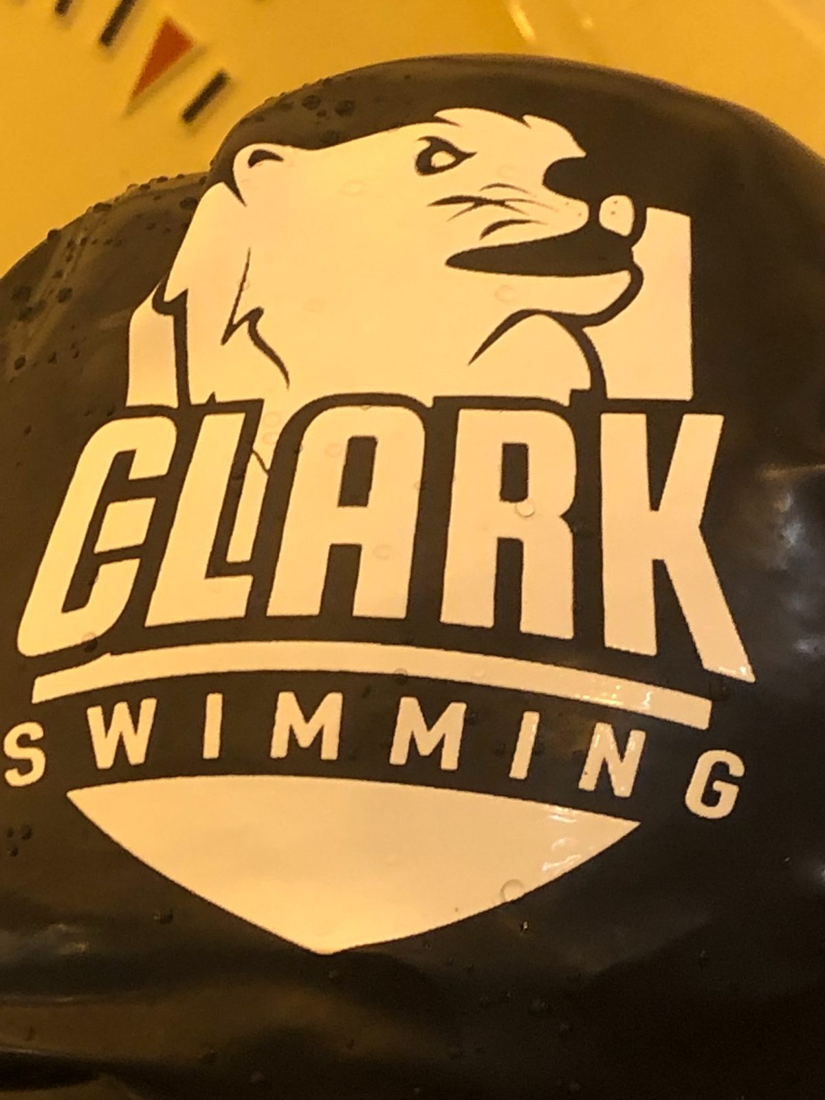 Boys Swim Sectional Prelims Tonight at Munster HS – Links to Watch #PioneerOn #WeWillLead #LastDanceGRC