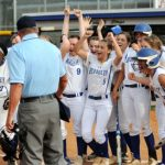 Brabham, Wyndham power Lady Stags to district final
