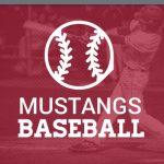 Mustangs baseball banner