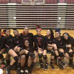 2017 Lady Bulldogs Volleyball Team