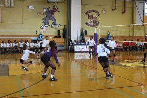 Lady Eagles in Action