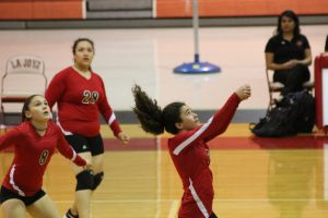 Freshmen Volleyball: Lobos vs. Coyotes