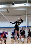 UCHS Volleyball Wins Second Round Playoff Match, Move on to Quarterfinals