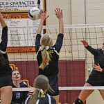 Volleyball: Challengers Tame Mustangs