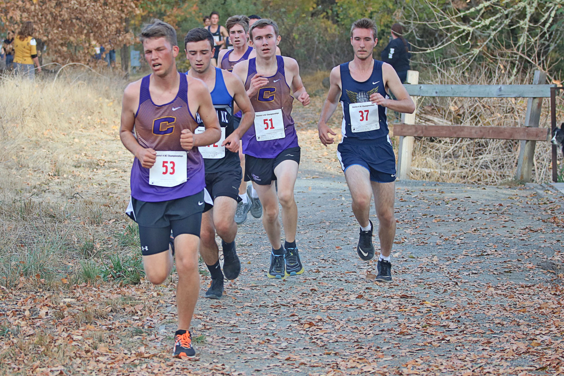 Year In Review (Cross Country): Something To Build On