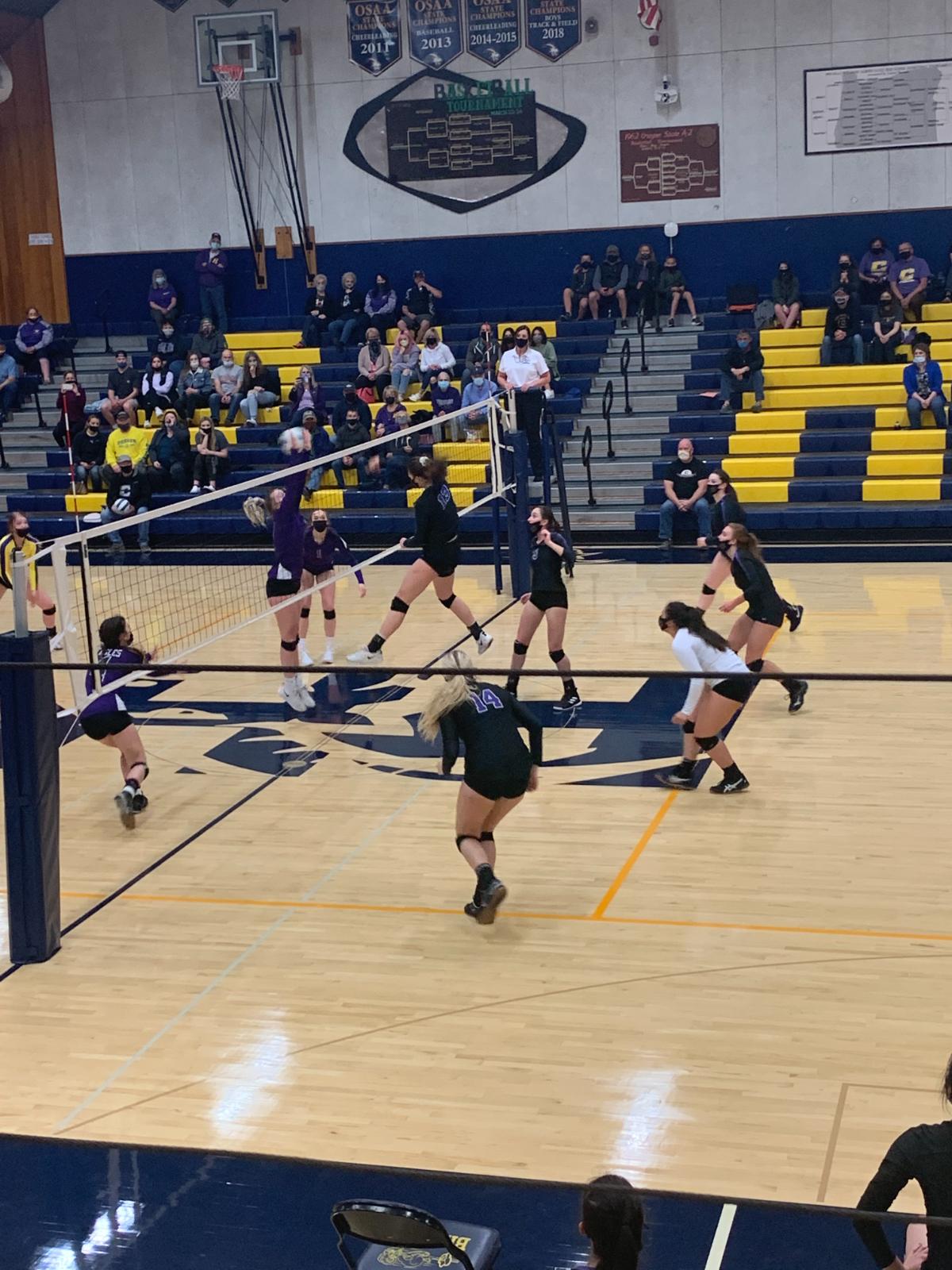 Volleyball: Scenes From Quarterfinals (Harrisburg)