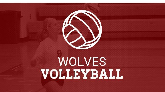 Summer Volleyball- Starting in JUNE!