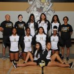 Lady Viks Volleyball Goes Big on Sr. Night