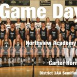Lady Hornets fall to Northview in the District 3AA Semifinsls