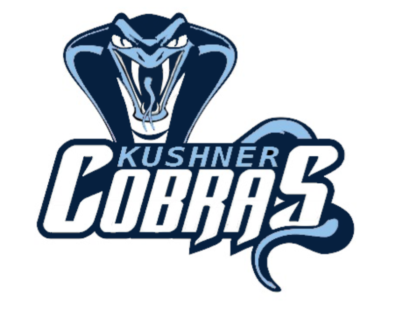Welcome To The New RKYHS Cobras Website