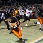 Lions on the road vs Fayette County Friday in Quarterfinals
