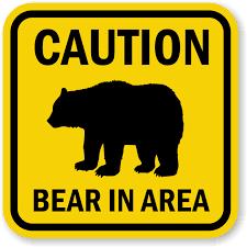"""BEAR""FORMATION"