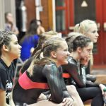 Gymnastics Team Advances to Regional