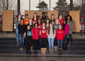 Focal Point CHS Council 2017 Yearbook Photo 2014-2015