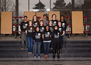 Focal Point PHS Council 2016 Yearbook Photo 2014-2015