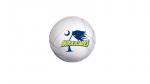 Girls Junior Varsity Volleyball beats Palmetto 2 – 0