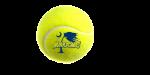 Boys Varsity Tennis beats West Oak 6 – 0