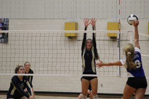 JV Volleyball vs. Mishawaka Marian 9/11/18 (Photo Gallery)