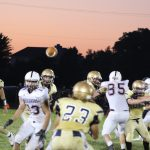 Herald-Argus Article:  Rough stretch for Cougars