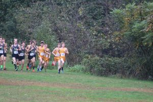Boys Cross Country @ IHSAA Sectional 10/6/18 (Photo Gallery)