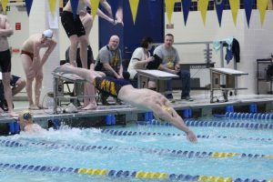 Boys Swimming @ IHSAA Sectional  2/14/18  (Photo Gallery 2 of 2)