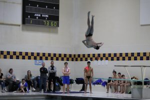 Boys Swimming & Diving at IHSAA Sectional Finals  2/16/19  (Photo Gallery 1 of 2)