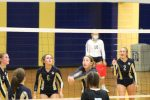 Freshman Volleyball vs. SB St. Joseph  9/1/20 (Photo Gallery)