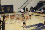 Girls Varsity Volleyball beats South Bend Adams  3 – 0